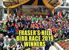 Fraser's Hill Bird Race 2019 Results