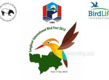 Langkawi International Bird Fest 2019